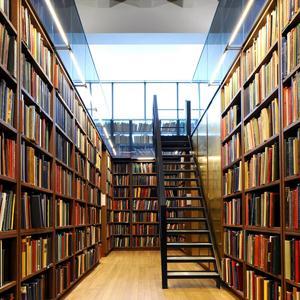 Библиотеки Александровска-Сахалинского